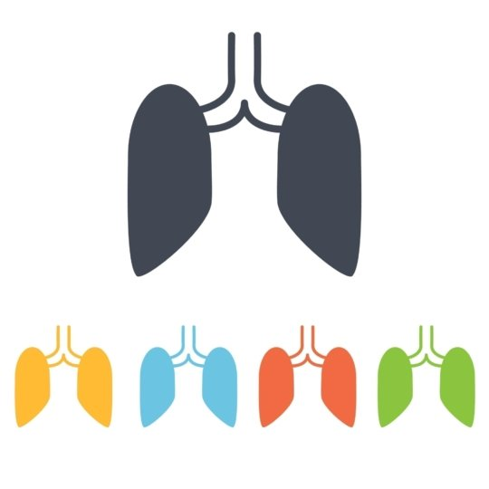 An illustration of lung shapes drawn in different colors